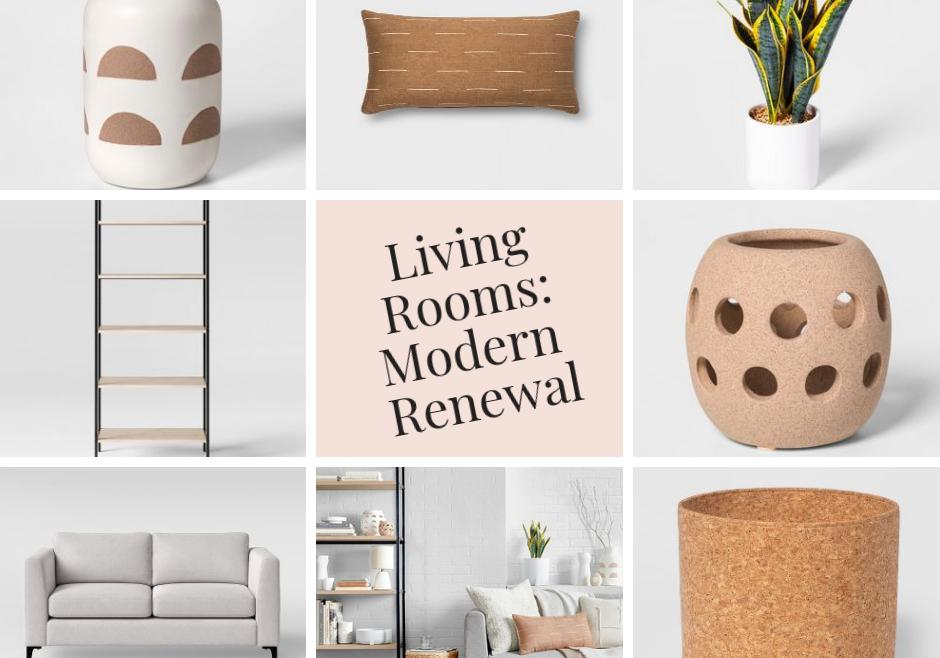 Modern-Renewal-Living-Rooms